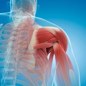 OTC Hemp Cream for Deep Muscle Tissue pain relief graphic