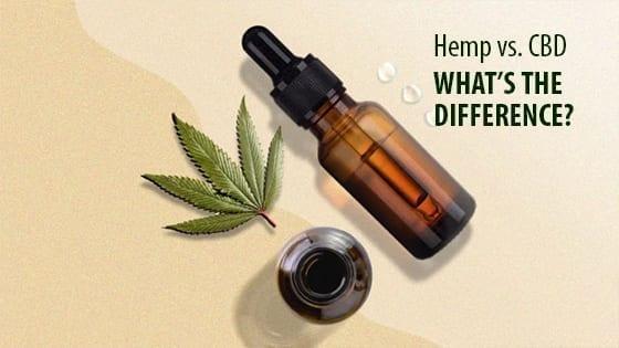 Hemp vs CBD What's the Difference?