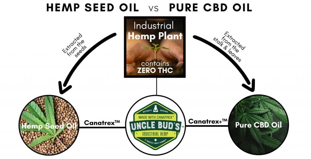 hemp-seed-vs-pure-cbd-oil