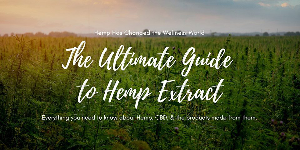 Ultimate Guide Hemp Extract Header